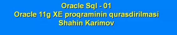 Oracle SQL öyrənməyə proqramın yazılmasından başlayaq